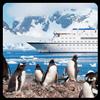 Librairie Antarctique