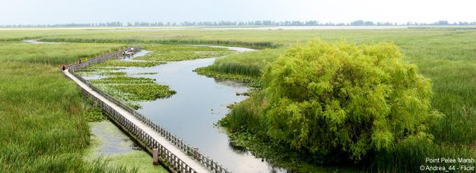 5 sites naturels éblouissants en Ontario
