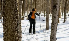 raquette et le ski de fond sur l'île de Montréal