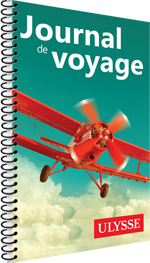 Journal de voyage Ulysse - L'avion