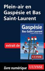 Plein-air en Gaspésie et Bas Saint-Laurent