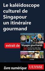 Le kaléidoscope culturel de Singapour un itinéraire gourmand