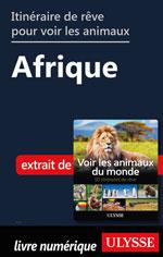 Itinéraires de rêve pour voir les animaux -  Afrique