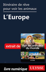 Itinéraires de rêve pour voir les animaux -  L'Europe