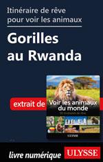 Itinéraire de rêve pour voir les animaux Gorilles au Rwanda