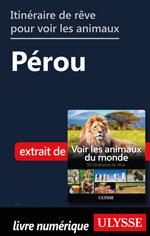 Itinéraire de rêve pour voir les animaux -  Pérou