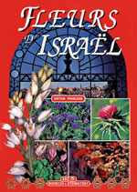 Fleurs d'Israël