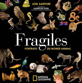 Fragiles : Portraits du Monde Animal