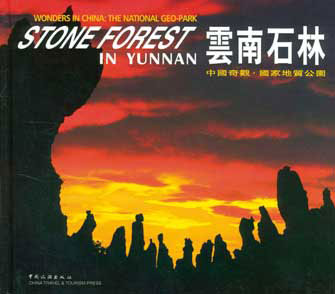 Stone of Forest in Yunnan