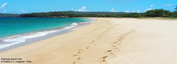 hawaii-plage